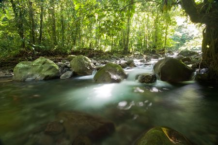 Rushing creek in the rainforest of tropical island