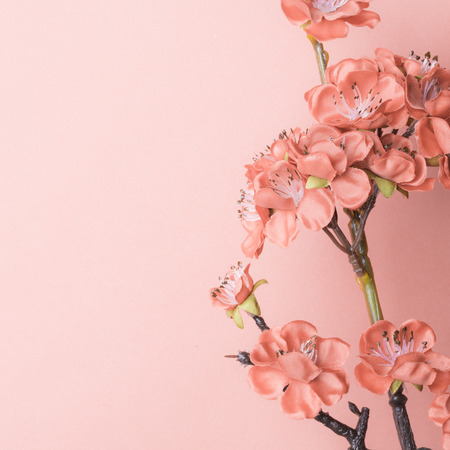 still life flowers: Chinese new years decoration for Spring festival Stock Photo