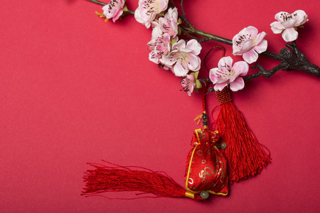 Chinese new years decoration for Spring festival photo