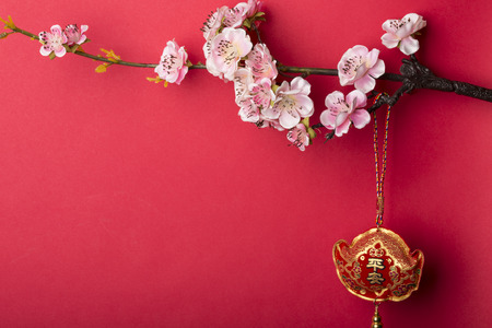 joyous festivals: Pink plum blossom isolated on red background.