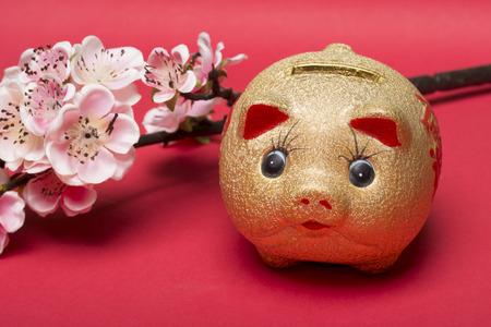 fr�hlingsfest: Chinese new years decoration for Spring festival Lizenzfreie Bilder