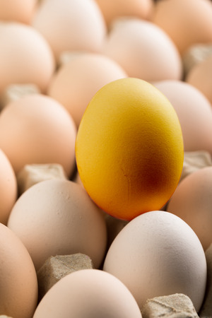 Close up view of a golden egg  on a tray full of eggs Stock Photo