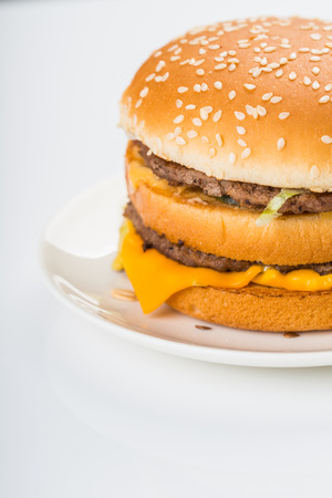 necessities: Close up view of hamburger on white background