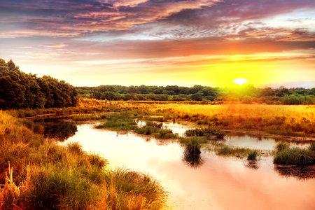Landscape scenery view of Heilongjiang Suiling wetland