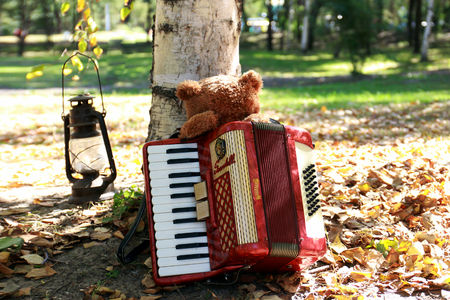 Bear and accordion Editorial