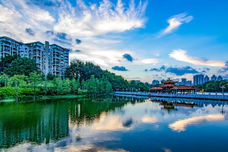 Shenzhen litchi Park