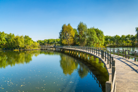 The pond on the Long Bridge