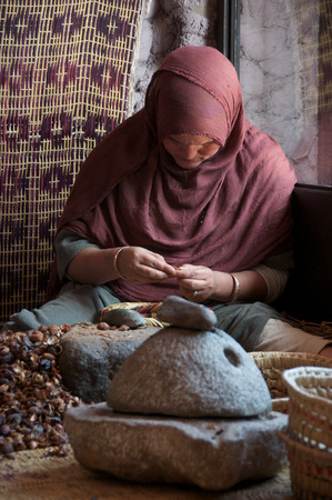 cooperative: Traditional method of producing Argan oils, a Berber lady working with Argan nuts to extract the kernel in a womens cooperative in Imlil in Morocco