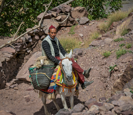 Berber Shepherd with a sheep in basket on his horse in Toubkal National Park Morocco