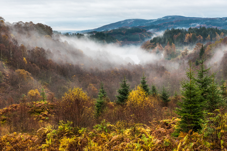 trossachs national park: A misty morning on the Dukes Pass, a high level route through the Trossachs in the Scottish Highlands in full autumn or Fall colours