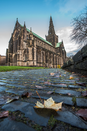 cobbles: Leaf on the cobbles to Glasgow Cathedral