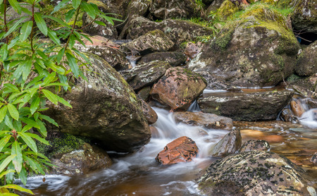 highland: Scottish Highland Stream