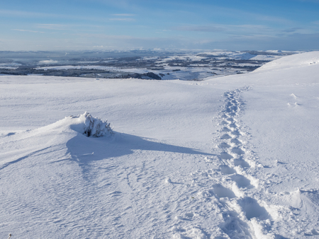 Footprints in the snow from a walker using snowshoes in the Campsie Fells in Scotland Stock Photo