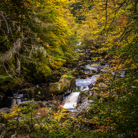 The autumn colours  and the river Braan at the Hermitage near Dunkeld, Perthshire in the highlands of Scotland