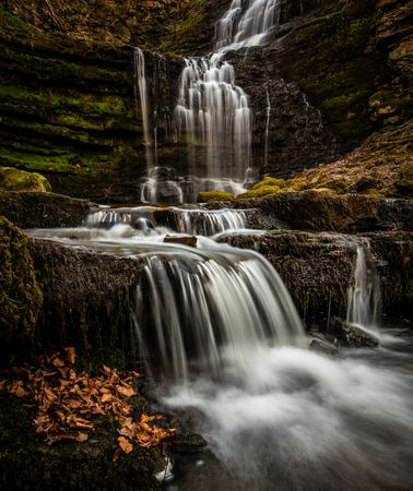 Scaleber Falls lie in a deep  wooded gorge near the market town of Settle in the Yorkshire Dales. The falls are 40 foot high and cascade over limestone cliffs