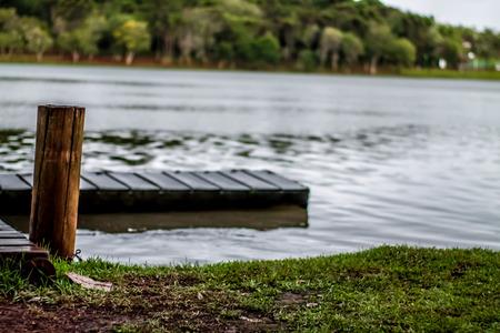 serpiente de cascabel: Lago de cascabel PR, puente de madera, la naturaleza Foto de archivo