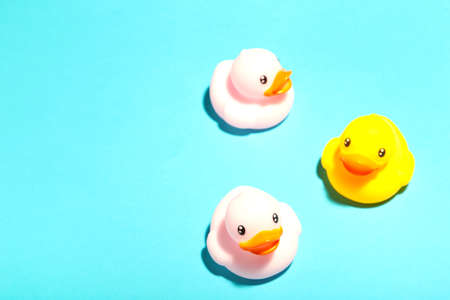 Colorful rubber bath ducks on blue background. Top view