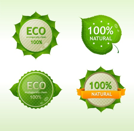 Vector Eco green Labels isolated Stock Vector - 17290284