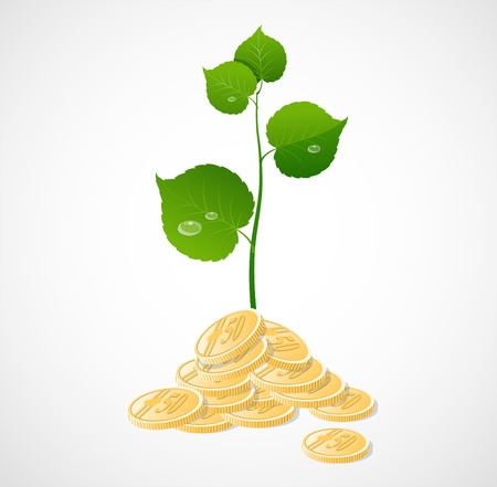 vector coins and plant isolated Stock Vector - 17290321