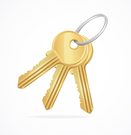 patent key: Vector Golden Keys bunch