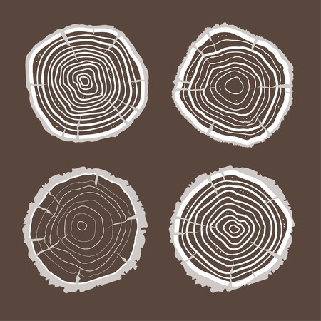 wood cuts: Vector illustration tree rings set isolated on brown background. Flat Design