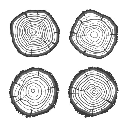 rings on a tree: Vector illustration tree rings set isolated on background. Flat Design