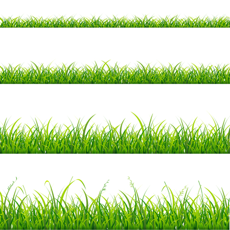 Green Grass Line Set Element for Design. Vector illustration Stock Illustratie