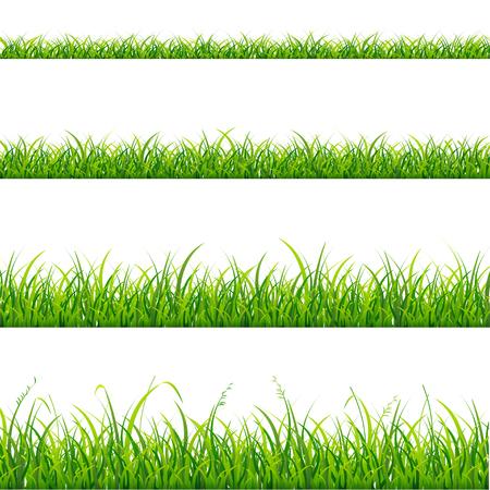Green Grass Line Set Element for Design. Vector illustration Vettoriali