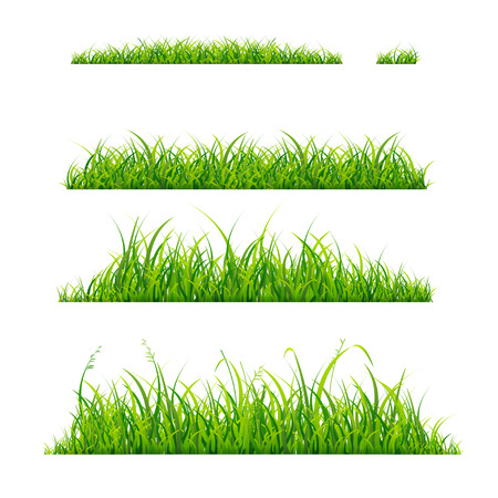Green Grass Line Horizontal Set. Vector illustration 向量圖像