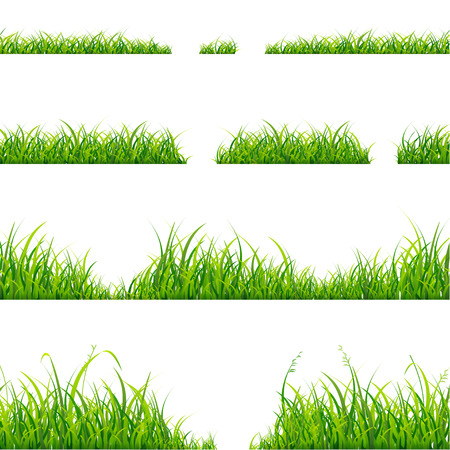 grass: Green Grass Line Set On White Background. Vector illustration Illustration