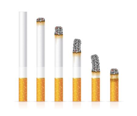 Sigarette realistiche hanno impostato diverse fasi di Burn. illustrazione di vettore