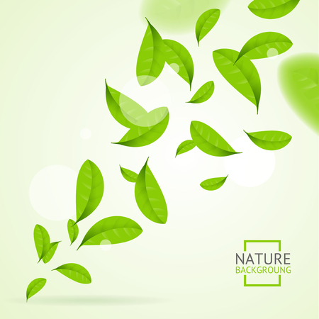 Realistic Fly Green Leaves Pattern Background. Vector
