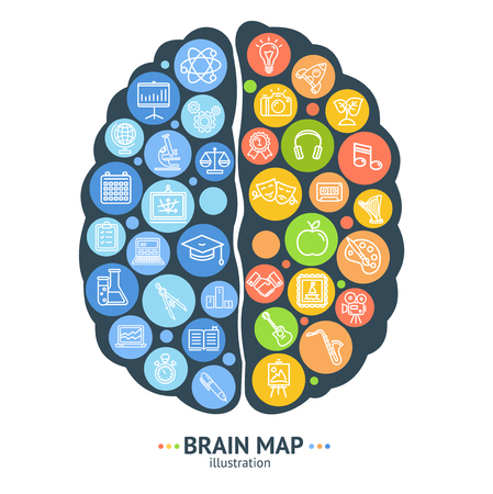 Human Brain Map Concept Left and Right Hemisphere. Vector Vettoriali