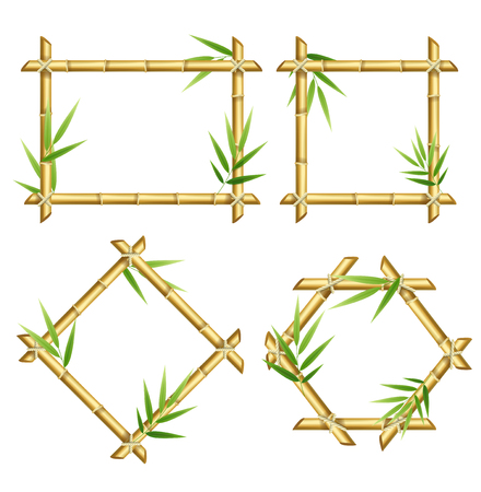 Realistic 3d Detailed Bamboo Shoots Frames Set. Vector Illustration