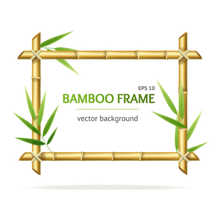 Realistic 3d Detailed Bamboo Shoots Frame. Vector  イラスト・ベクター素材