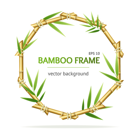 Realistic 3d Detailed Bamboo Shoots Circle Frame. Vector