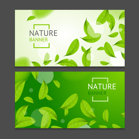 Realistic Fly Green Leaves Flyer Banner Posters Card Set. Vector  イラスト・ベクター素材