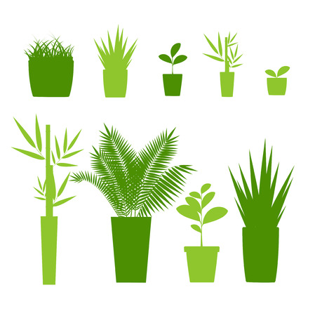 Green Silhouette or Contour Houseplant Pot Set Isolated on a White Background. Vector illustration of House Plant