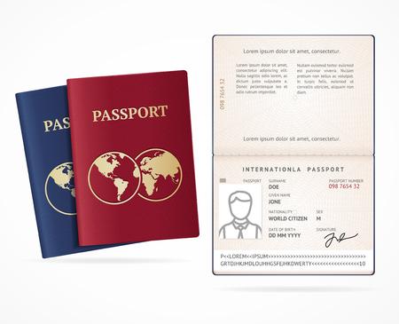 Realistic Detailed 3d International Passport Blank Set. Vector