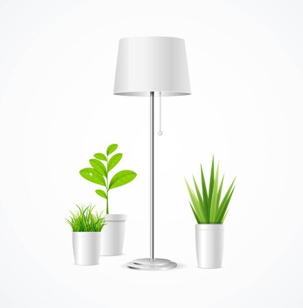 Realistic Detailed 3d Floor Lamp and Different Green Plant Interior in Pot. Vector illustration of Indoor Plants
