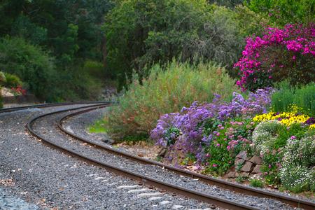 Railway Tracks Garden Edge in the country Stockfoto