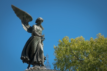 the fountain with angels: Angel of the waters in central park