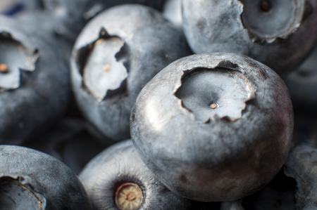 macro image: Macro image of a bunch of blueberries