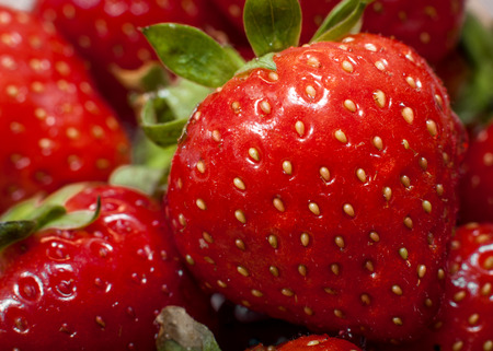 macro image: Macro image of strawberries