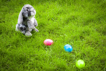 middle easter: Easter bunny on a easter egg hunt in the middle of a grassy green field