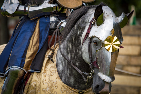 War horse, mounted by a knight in heavy armour, wearing a chanfron. The chanfron was designed to protect the horses face, A decorative feature common to many chanfrons is a rondel with a small spike