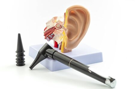 ENT or otolaryngology appointment, deafness prevention and hearing organ health concept with anatomical ear model and medical device used to check the ears (otoscope) isolated on white background