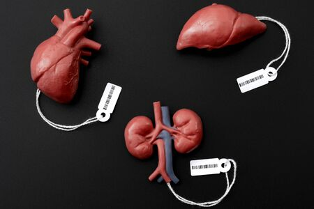 Modern day slavery, illegal trade of human organs on the black market and forced organ harvesting of death row inmates concept theme with a liver, heart and kidney with price tags and a barcode