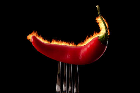 Capsicum, burning flavour and mexican food concept with red hot chili pepper stuck in metal fork with flames burning isolated on black background