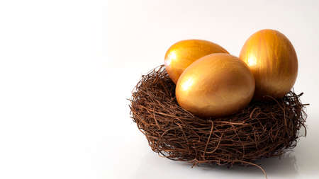 Financial investment and retirement concept with three golden eggs in a nest isolated on white with copy space